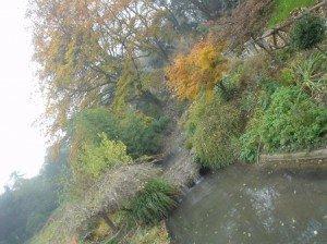 Parcelles d automne du 14eme palette-automne-300x224