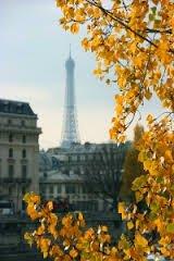 Paris automne 14